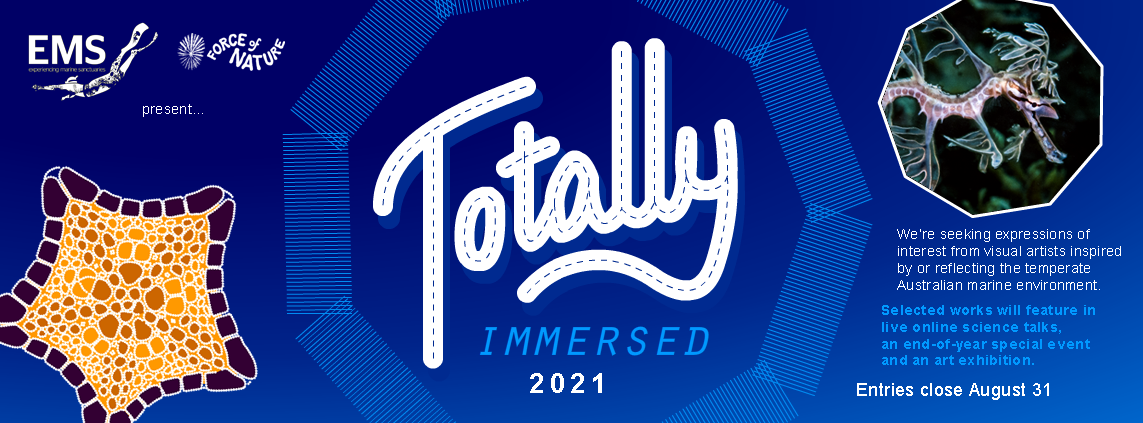 Totally Immersed - Call for entry 2021